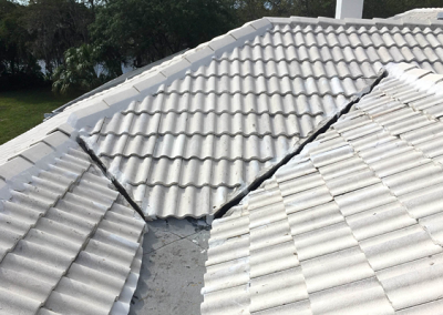 Roof Repair #1