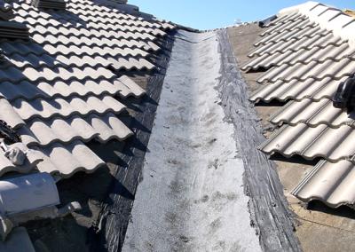 Roof Repair #9