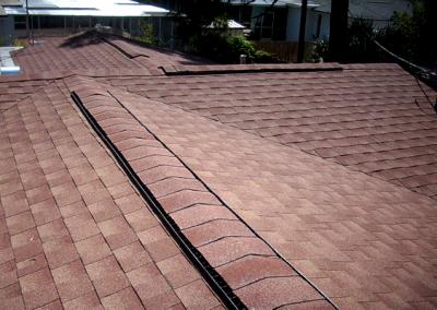 Shingle Roof #1
