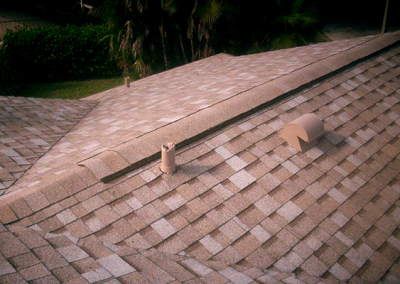 Shingle Roof #1