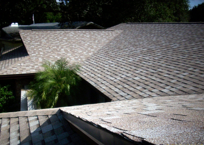 Shingle Roof #2
