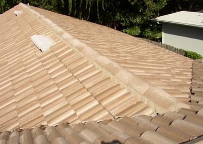 Tile Roof #1