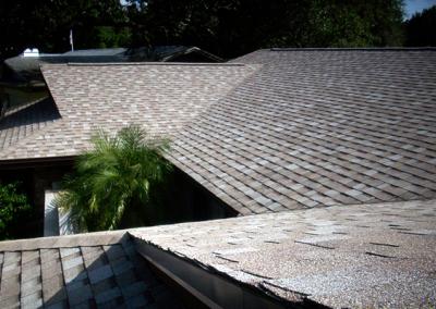 Shingle Roof #2