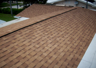 Shingle Roof #3